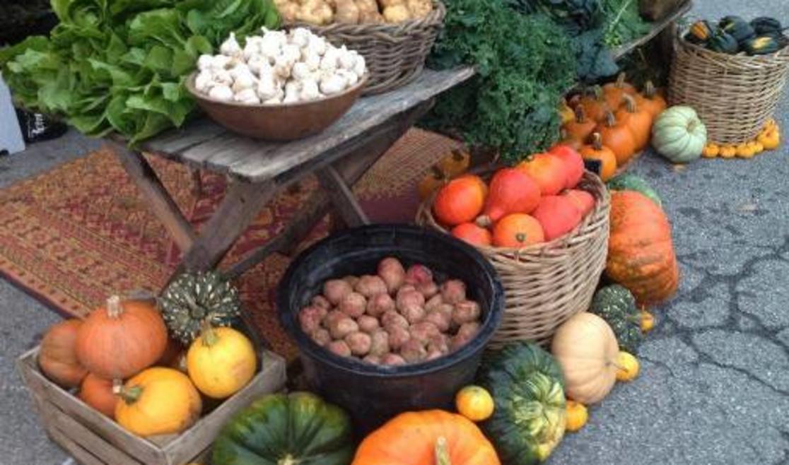 Watauga County Farmers Market | Boone, NC