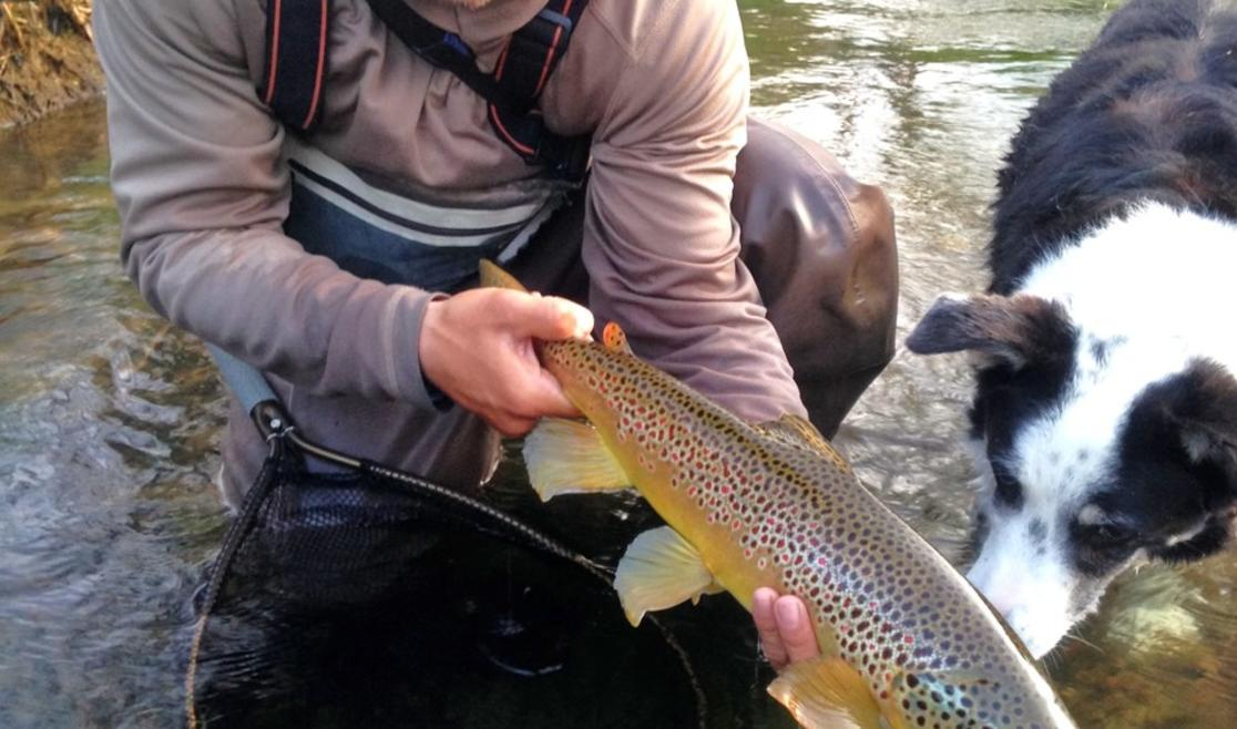 Flyfishing with Riverstone