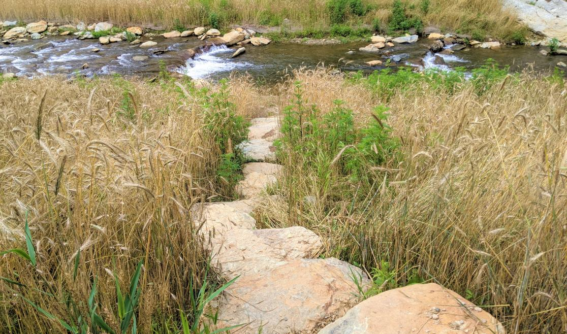 Payne Branch Park river access