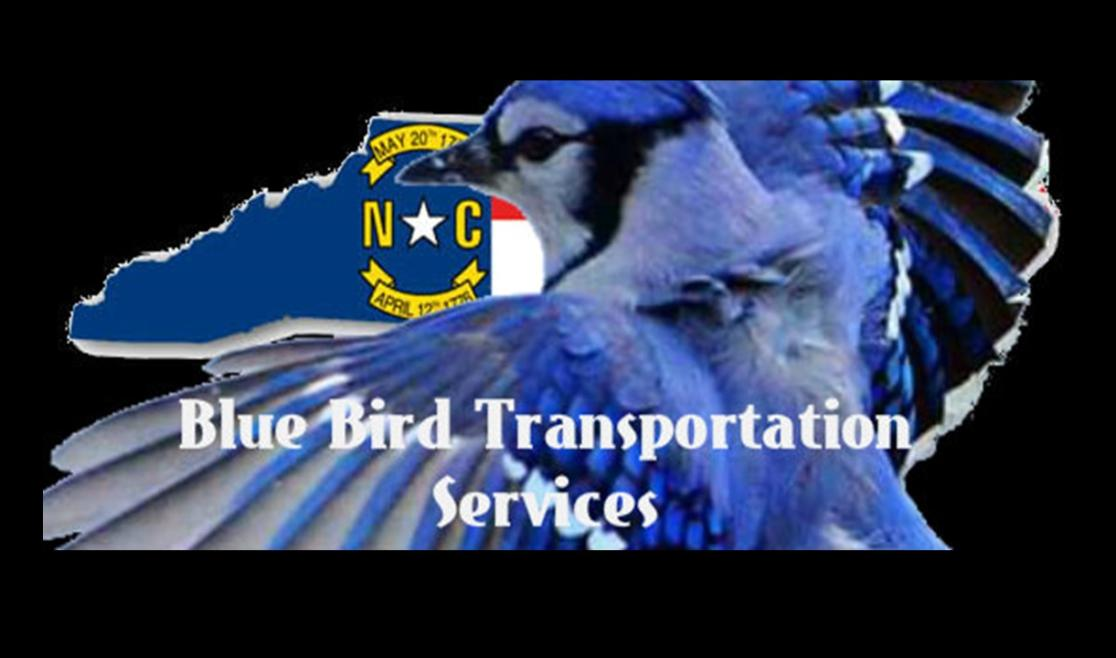 Blue Bird Transportation
