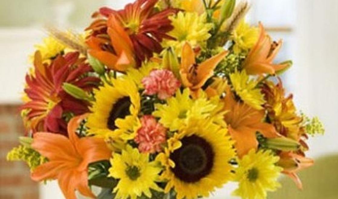 Artscapes Floral Design Center | Boone, NC