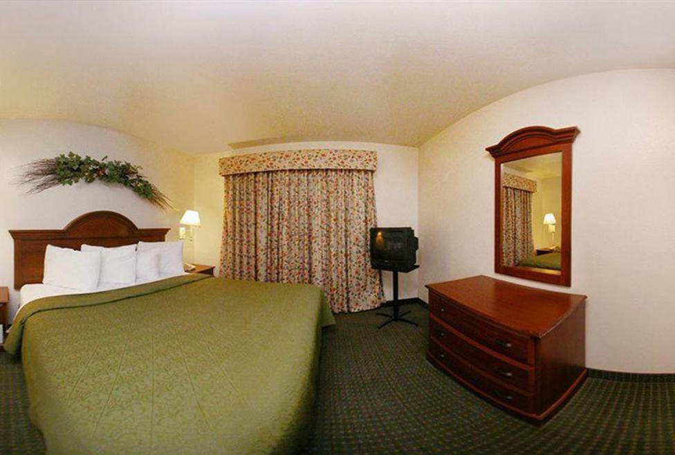 Comfort Inn DFW Airport North King 1