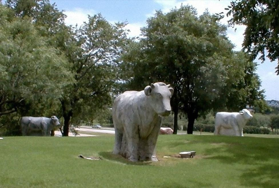 Marble Cows Sculpture