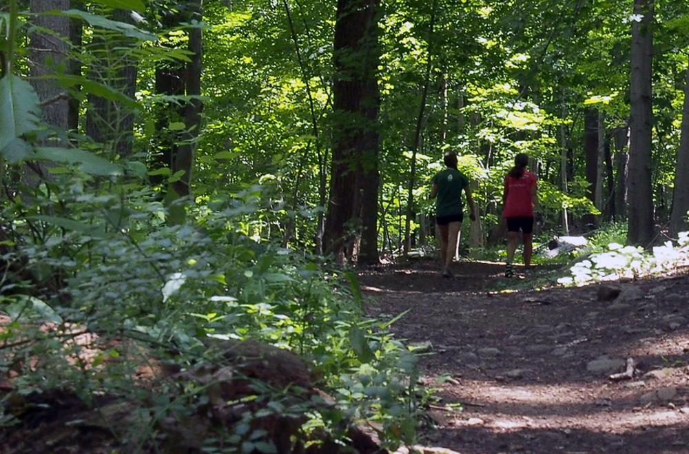 Two people on a hike surrounded by trees at Baldpate Mountain near Princeton, NJ.