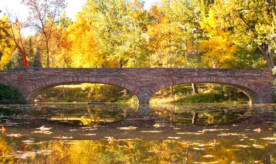 Varsity Lake & Bridge surrounded by trees turning yellow