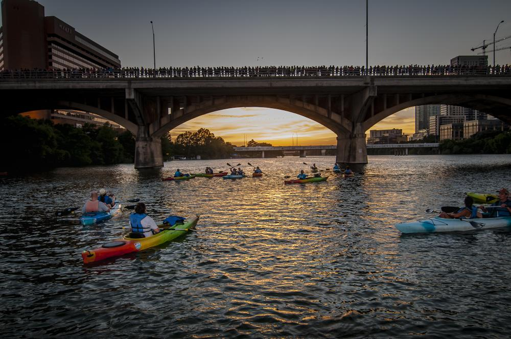 People in Rowing Dock kayaks at the bat bridge at sundown in Austin texas