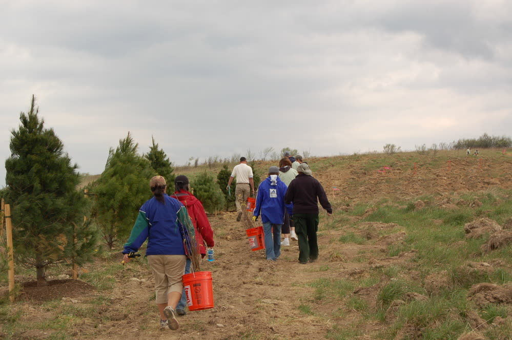 Plant a Tree at Flight 93
