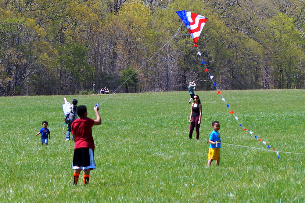 Gunston Hall Kite Festival image