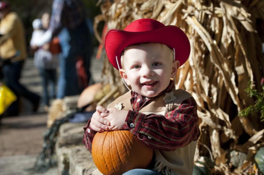 Wild Zoo Halloween Boy