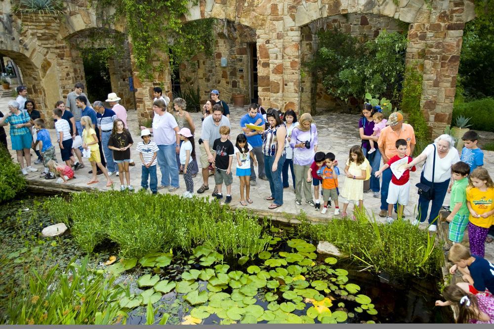 Children gather at the Lady Bird Johnson Wildflower Center wetland pond