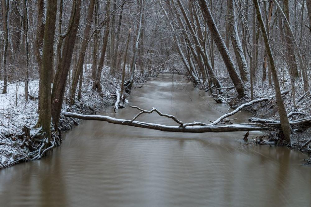 Winter along the Cedar Creek in Bicentennial Woods in Fort Wayne, Indiana: Photo by Thomas Sprunger