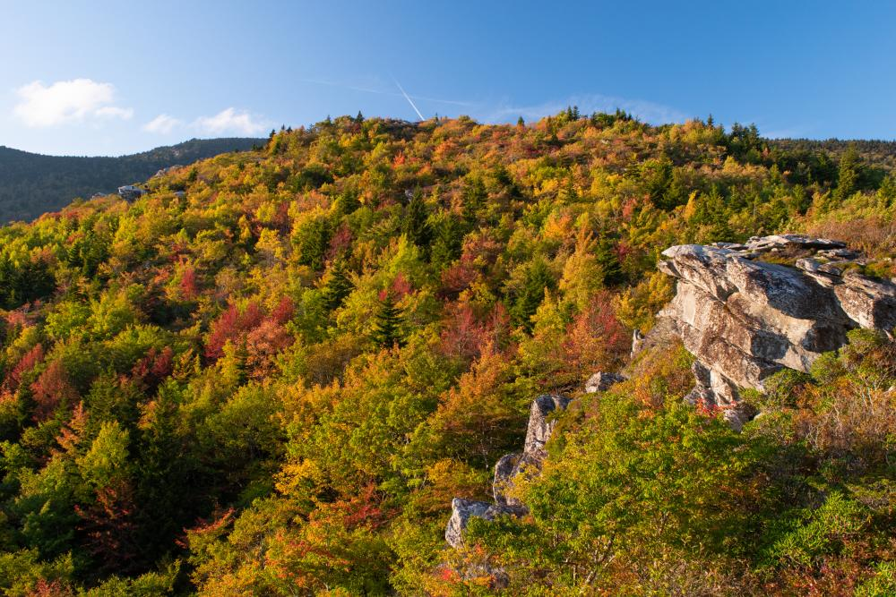 Early fall color is illuminated by golden hour light at Rough Ridge on the Blue Ridge Parkway near Grandfather Mountain