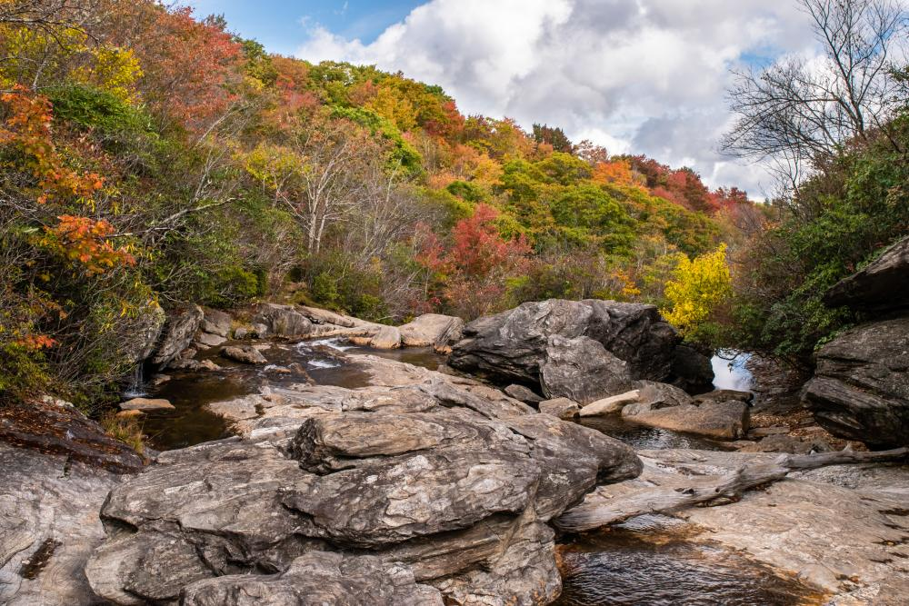 Near peak fall color at Graveyard Fields on the Blue Ridge Parkway near Asheville, NC