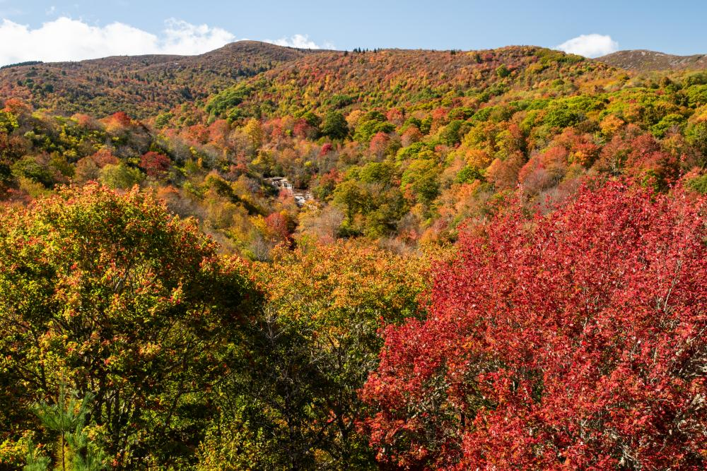 Lower Falls at Graveyard Fields is framed by fall color as seen from the Blue Ridge Parkway near Asheville.