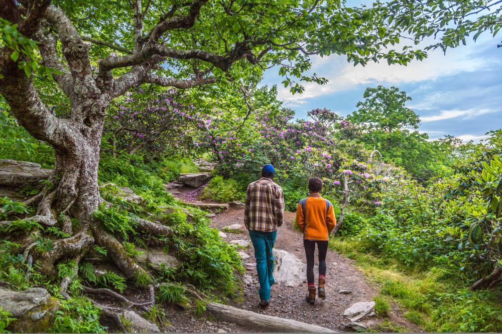 A couple hikes the Craggy Gardens Pinnacle Trail near Asheville, NC