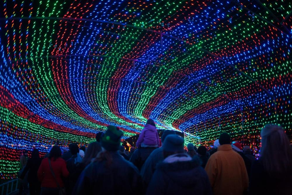 Tunnel of lights at Austin Trail of Lights