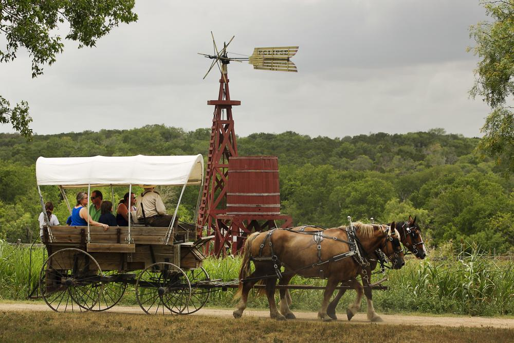 People taking a horse drawn Covered Wagon Ride at Pioneer Farms in Austin Texas