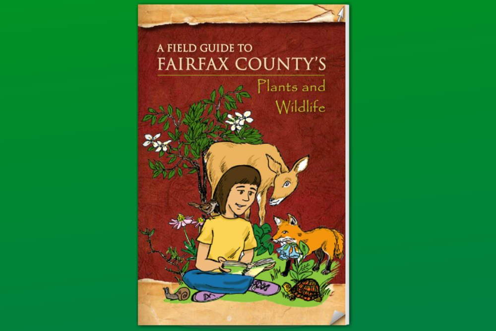 A Field Guide To Fairfax County's Plants and Wildlife