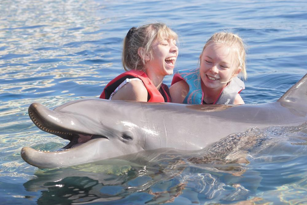 Children with a dolphin at Marineland Dolphin Adventure