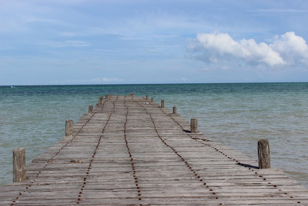 Punta Allen Dock