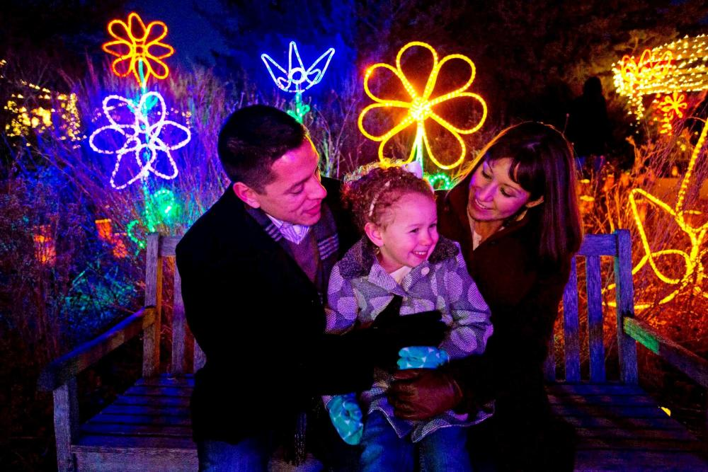 A family of 3 enjoy looking at the Christmas Lights