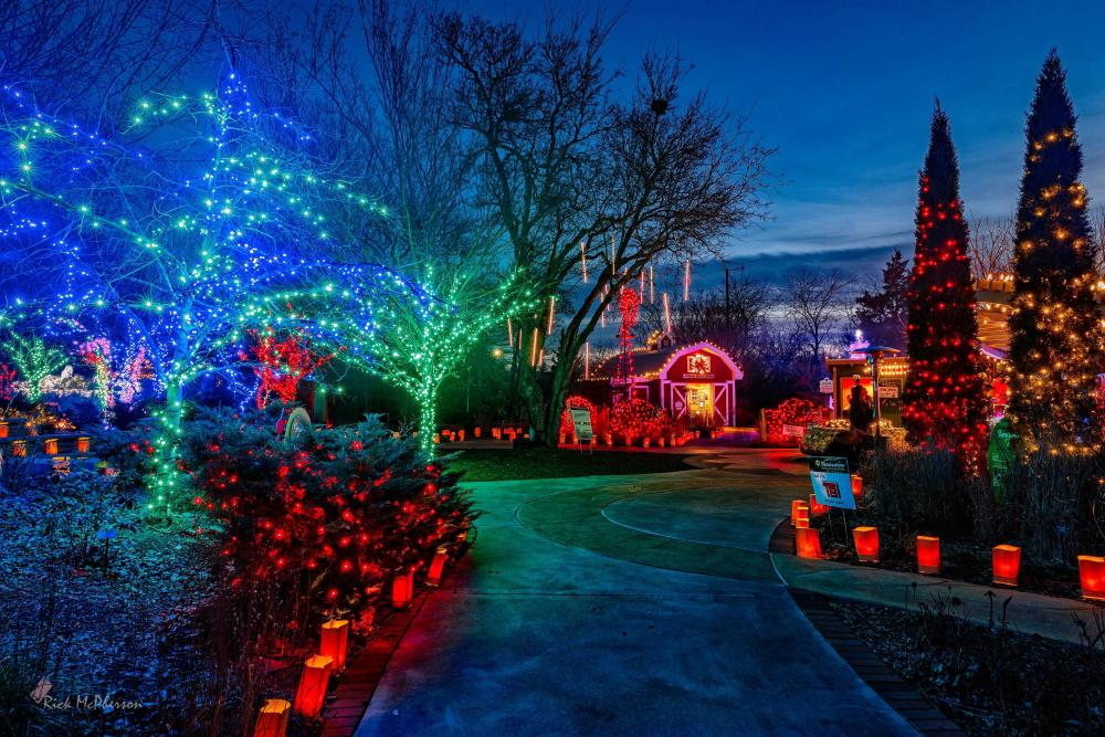 A night photo of Botanica lit-up with thousands of Christmas Lights