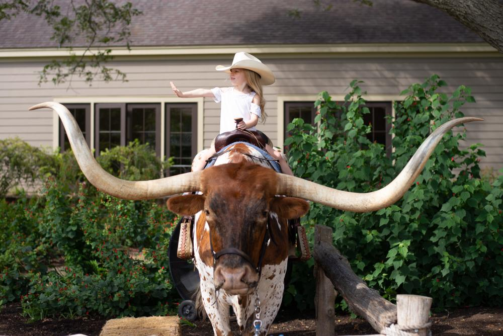 Child sitting on Longhorn at  Hyatt Regency Lost Pines Resort and Spa near austin texas