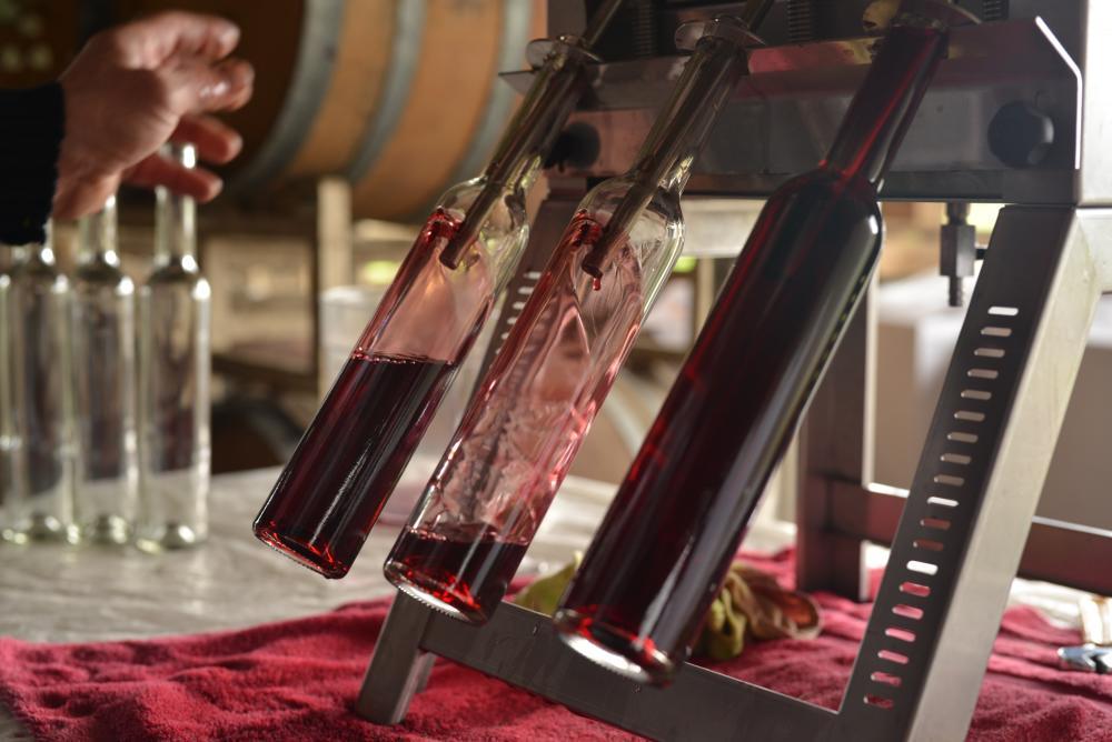 Saginaw Vineyards bottling by Melanie Griffin