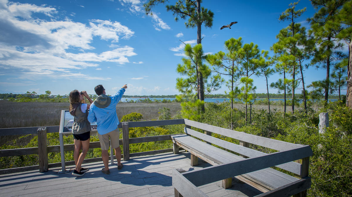 Couple birding in the Gulf Islands National Seashore