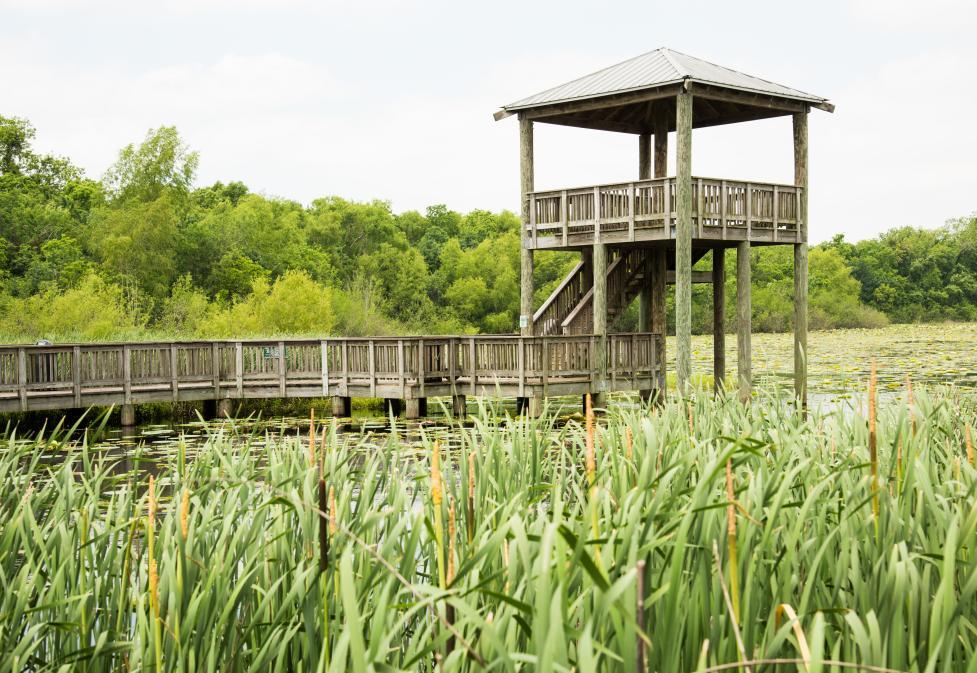 Cullinan Park
