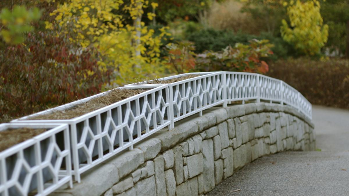 Bridge at the State Botanical Garden of Georgia