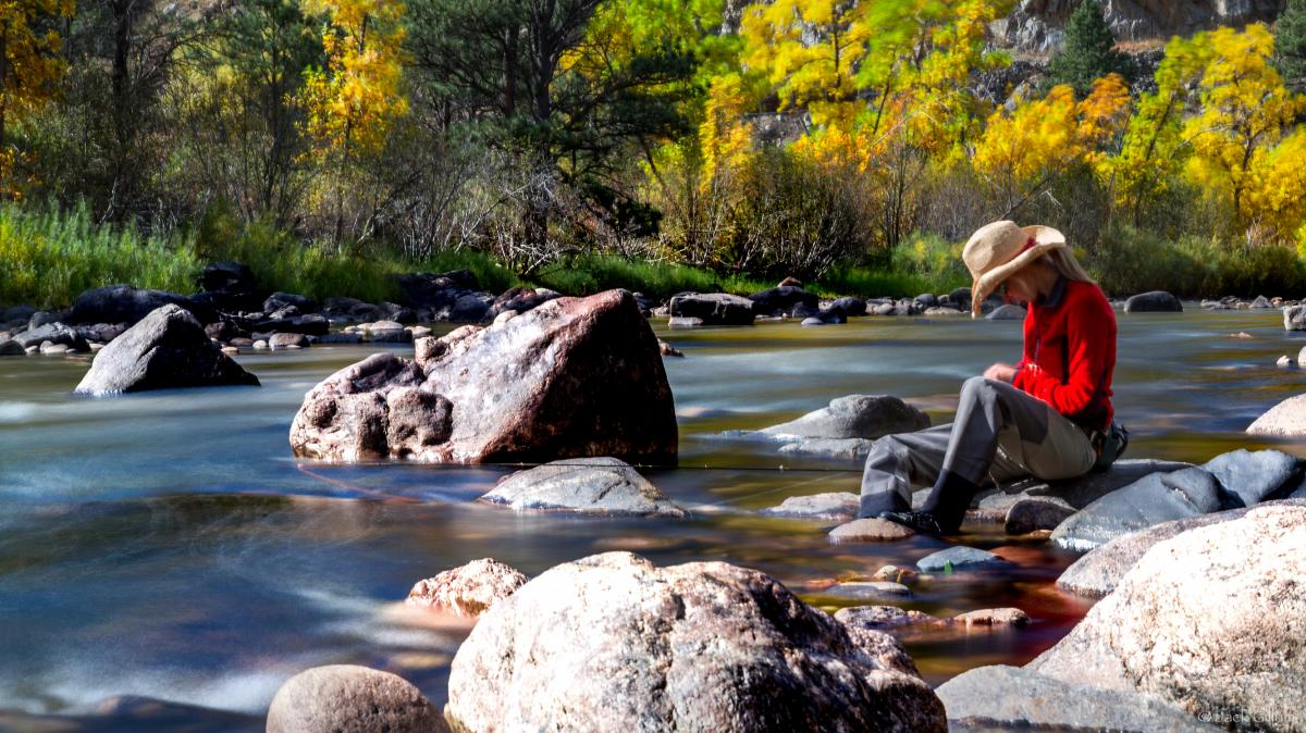 Poudre River Fishing Woman