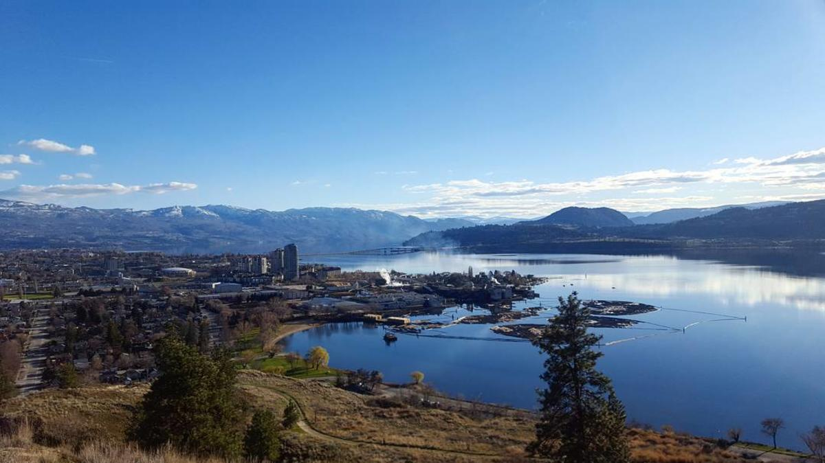 Knox Mountain Hike- View of Downtown Kelowna