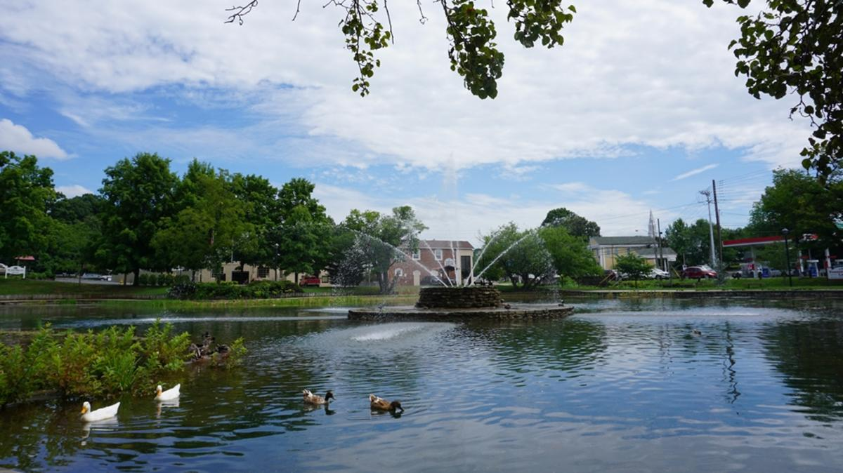 ​Fountain City Duck Pond courtesy of Knoxville History Project