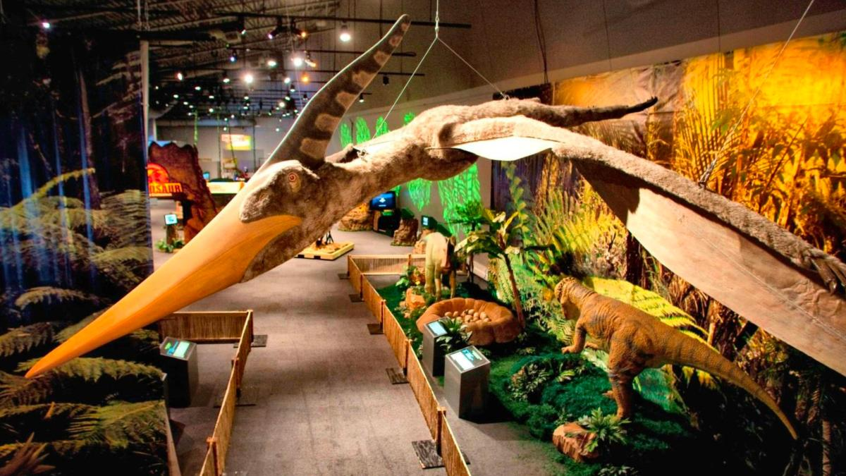 Dinosaur Discovery Exhibit at Whitaker Center 2017
