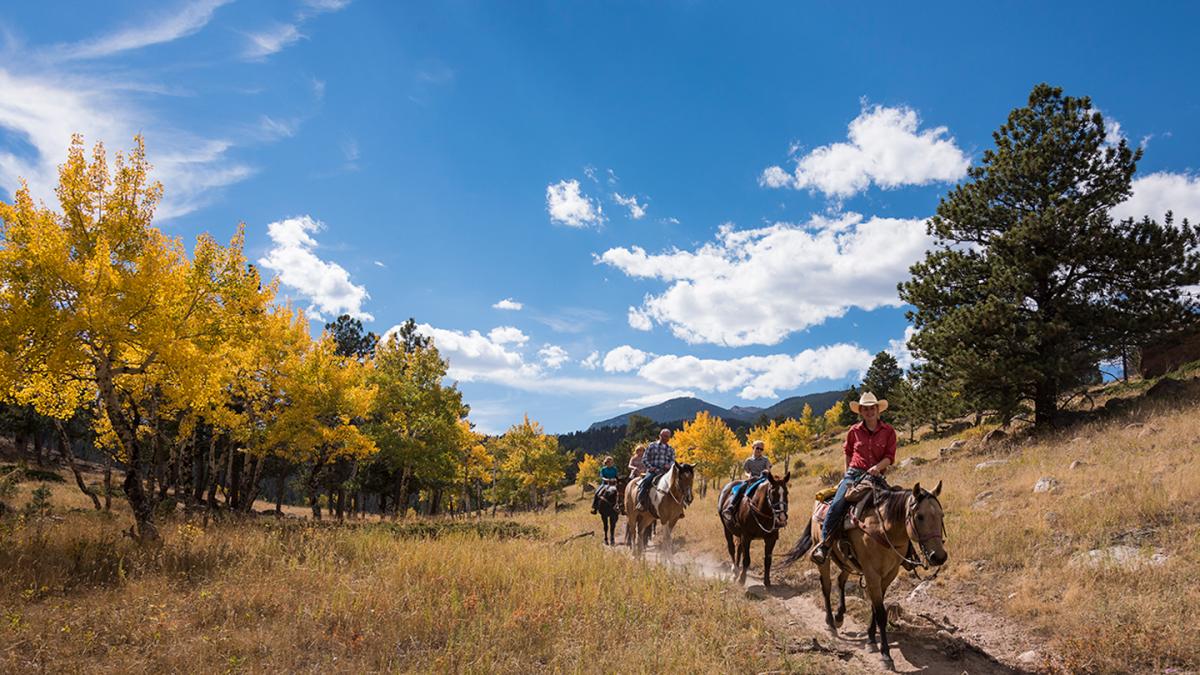 5 People on Horseback Riding Along a Trail