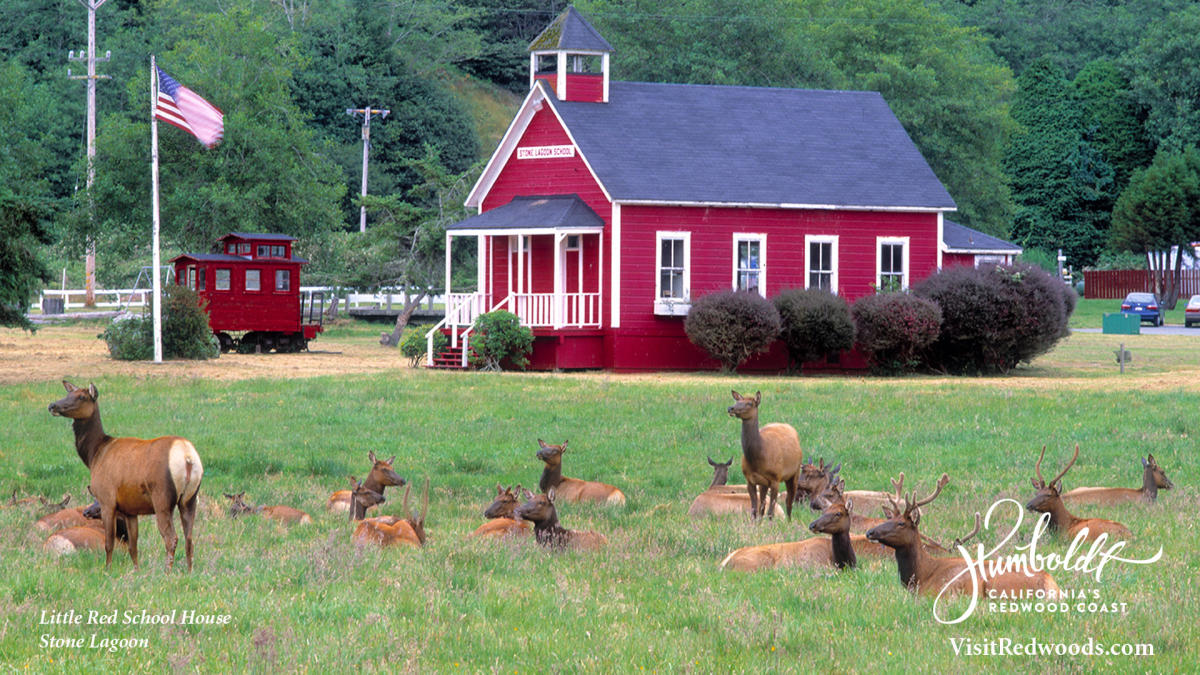 Zoom Red Schoolhouse