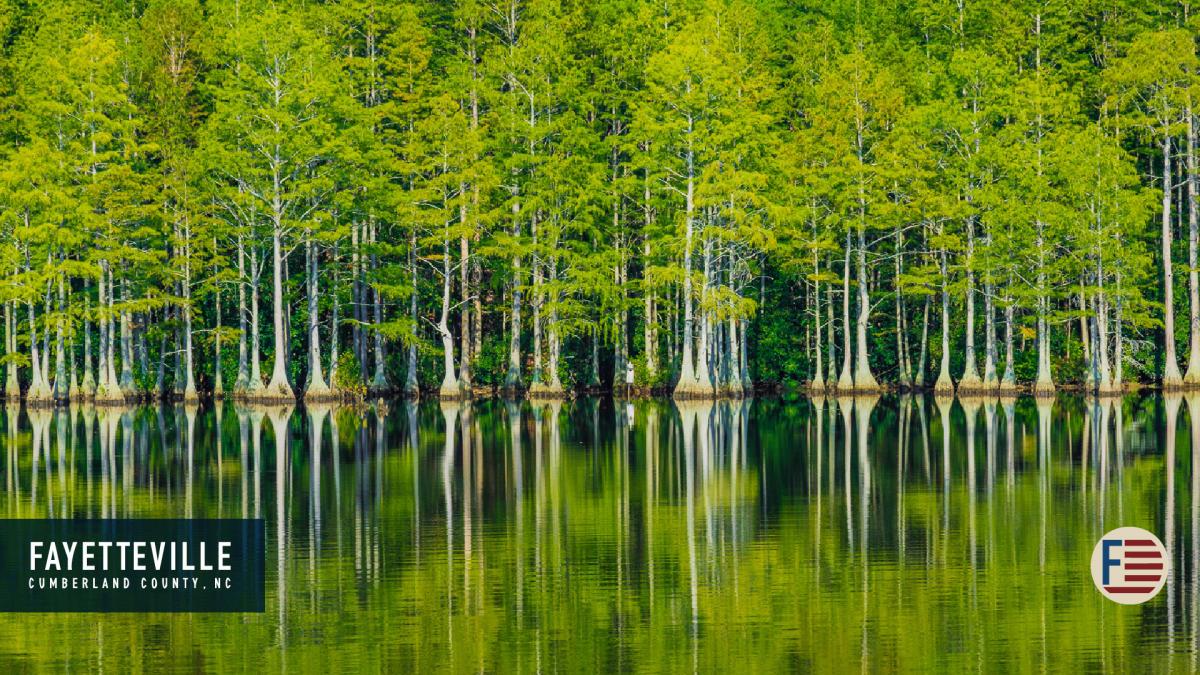 Zoom - Carvers Creek