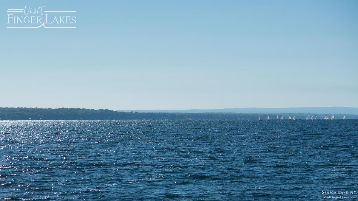 Seneca Lake Zoom Background