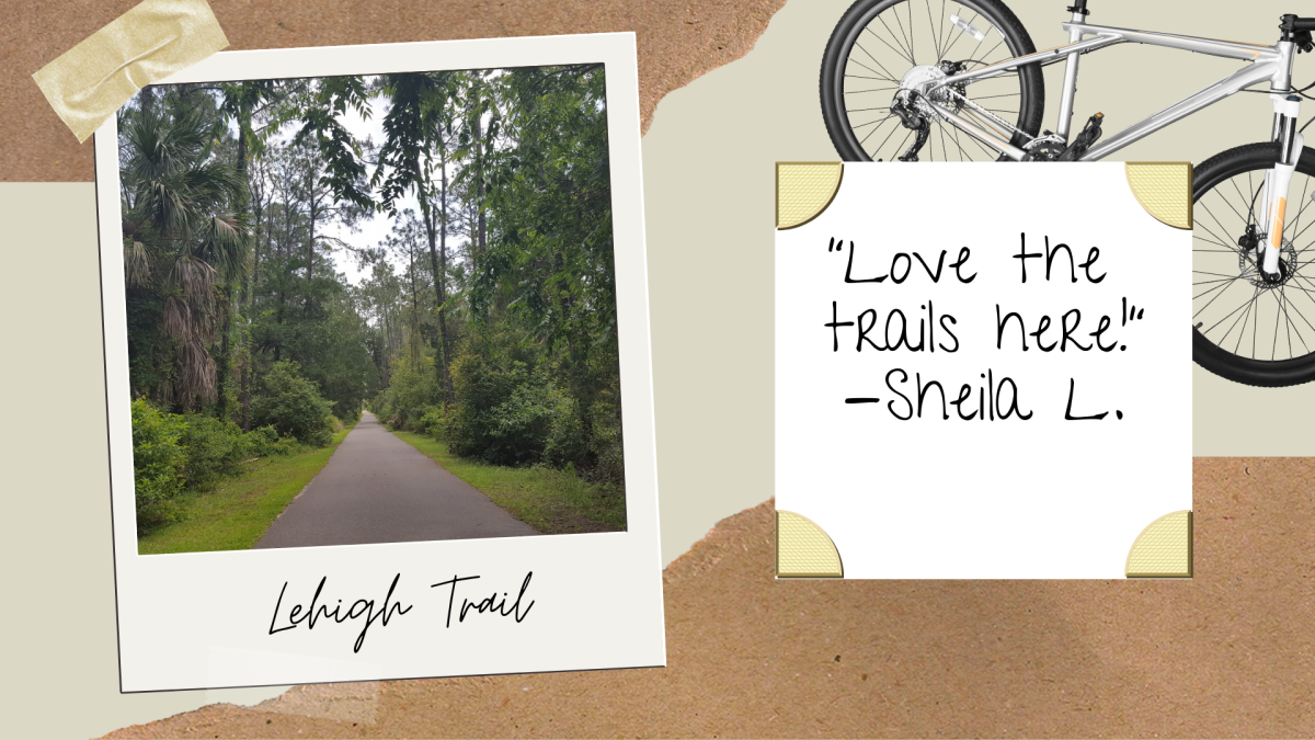 Chrissy Edit: A path through the trees at Lehigh Trail in Palm Coast, FL