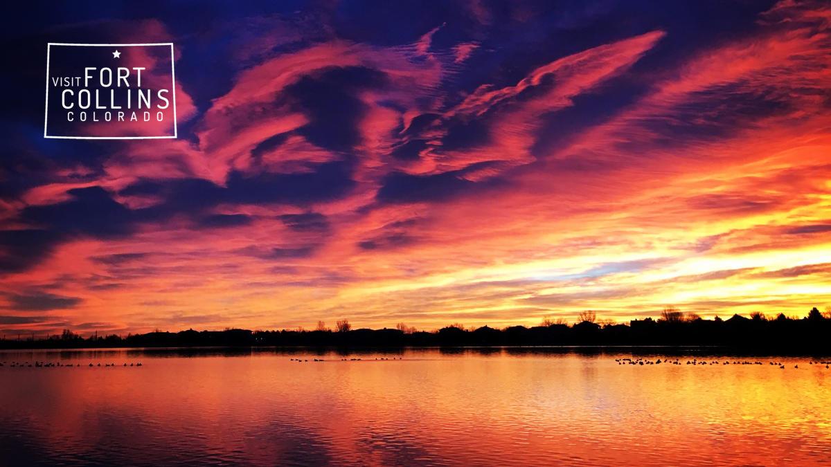 virtual warren lake sunset white logo