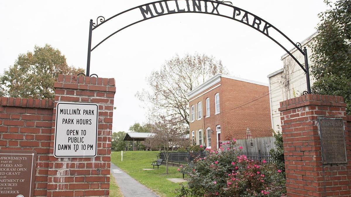 Mullinex Park