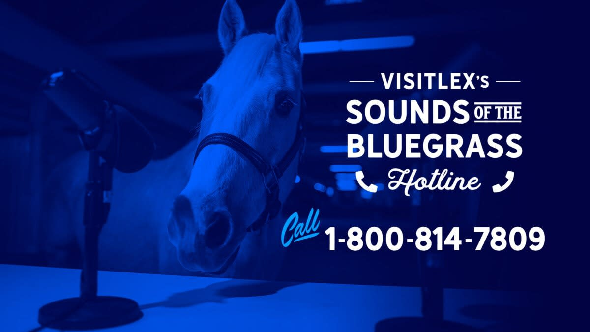 """Blue tinted photo of a horse behind two microphones with the text """"VisitLEX's sounds of the bluegrass hotline. 1-800-814-7809"""""""