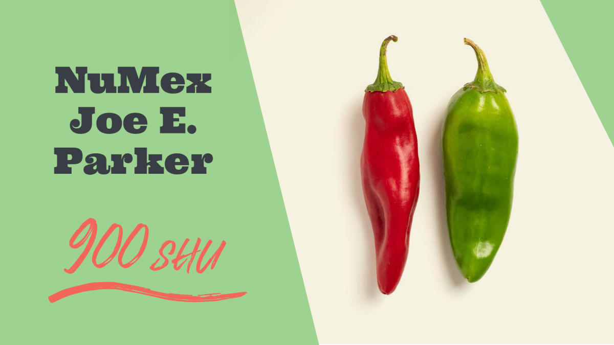 Pick A Pepper, Chile Varieties, New Mexico Magazine
