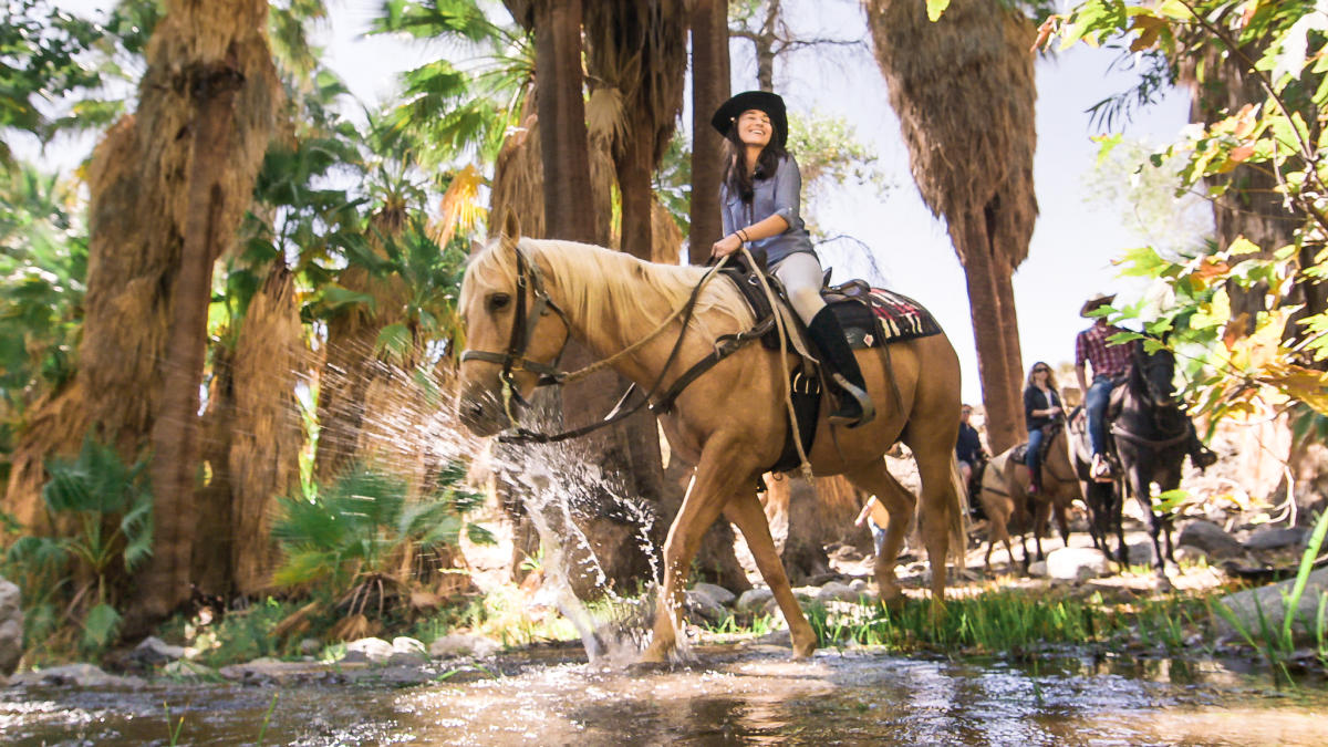 Horse and rider splashing through oasis on the trail in Andreas Canyon
