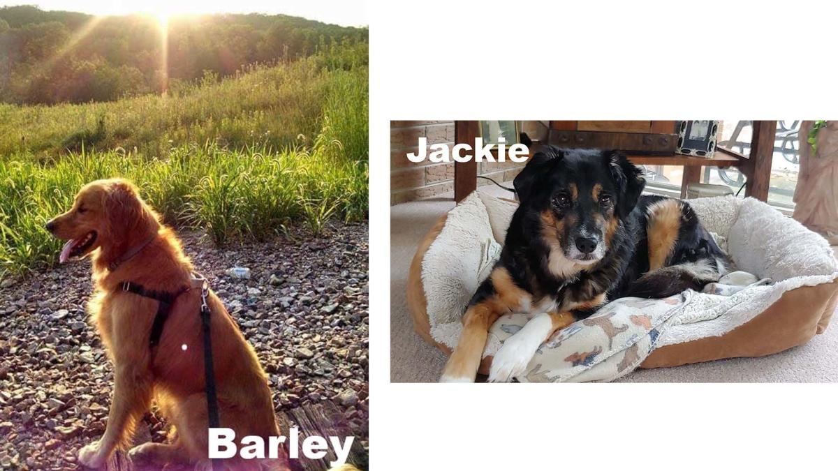 Barley & Jackie 2
