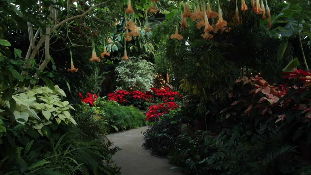 Peoria Gardens