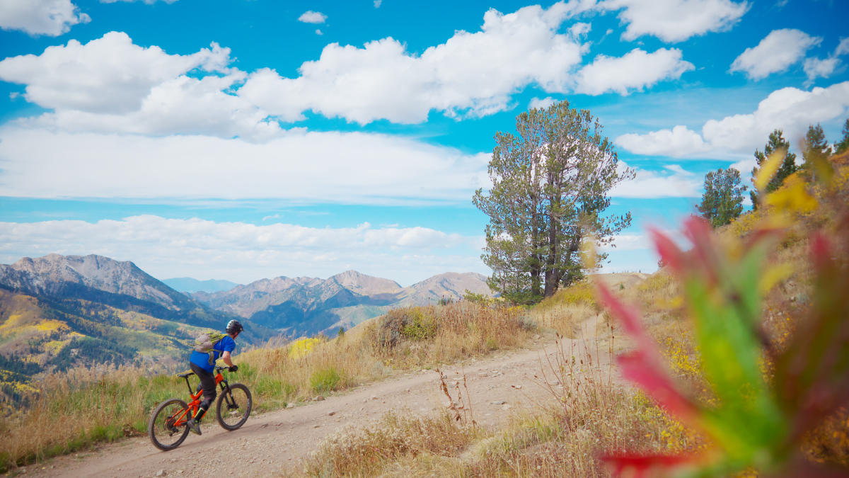 Wasatch Crest Trail Mountain Bike Ride