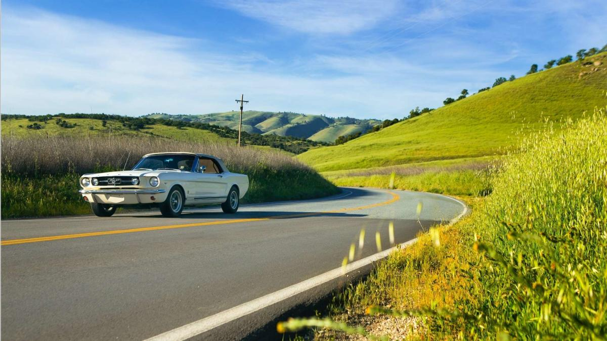 Mustang in Paso Robles, CA