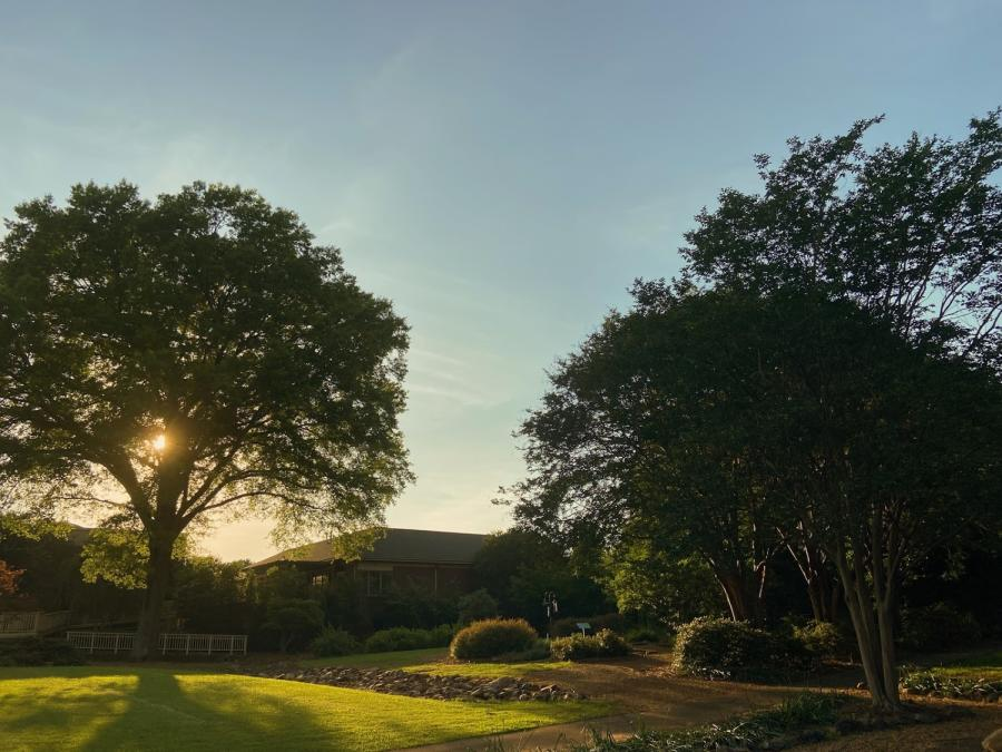 Huntsville Botanical Garden is a great place to enjoy the setting sun.